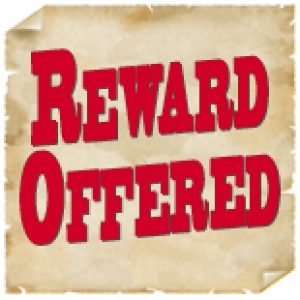 Let's be clear the reward isn't cash