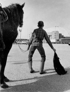 Me minus the horse